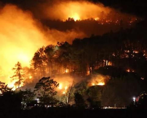 cháy rừng tại khu vực núi Nầm, xã Sơn Châu, huyện Hương Sơn tỉnh Hà Tĩnh